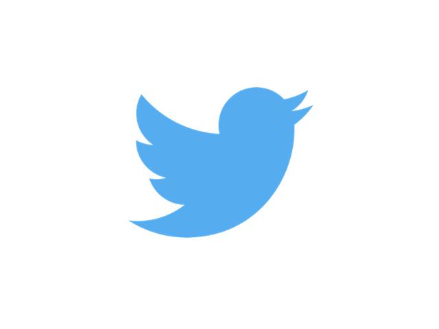 TwitterLogo_#55acee